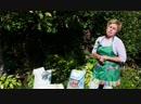 Укрытие гортензии на зиму Как правильно сделать сухое укрытие Украшаем сад с Хитсад