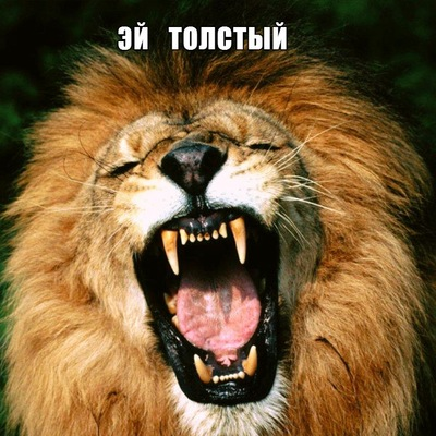 Деман Чибизов, 8 декабря , Москва, id228316553