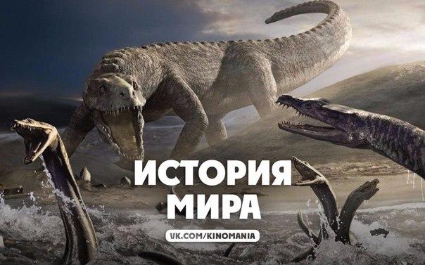 Фото №456304143 со страницы Кати Бражниковой