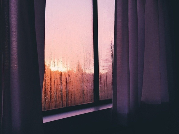 Всё-таки утро прекрасно, оно не безжалостно, как ночь, заставляющая вспоминать то, что хочешь забыть.