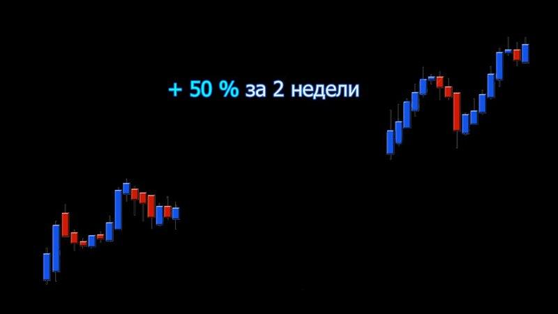 Результат 7 по трейдингу 50% за 2 месяца   Владислав Бурховецкий