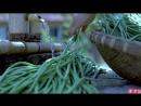 Ли ЦзыЦи - ДЕВУШКА С ХАРАКТЕРОМ! Особое блюдо из вяленой длинной фасоли со свининой ''Гань ЦзянДоу Дунь Жоу ПэньСян'' - услада д