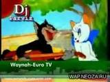 Кот поёт песню по Чеченская