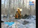 Война или забота Въезд в ДНТ Ангарские зори перегородили мусором