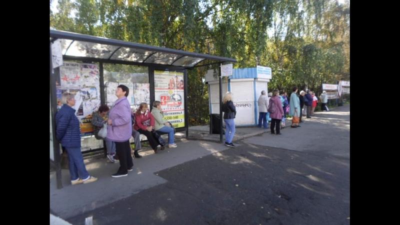 Бедлам с автобусами ГужевTV