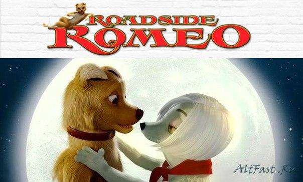 ромео с обочины смотреть: