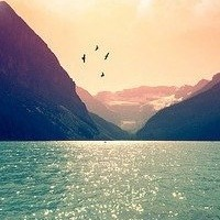 i_want_love_dream
