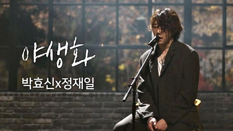 [풀버전] 박효신(Park hyo shin)x정재일(Jung jae il), 한층 깊어진 감성 ′야생화′♪ 너의 노래457