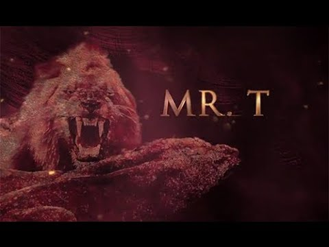 Mr T: One Of The 6 Legendary Mapogo Lions