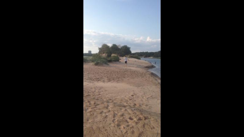 Прогулка по пляжу прикол