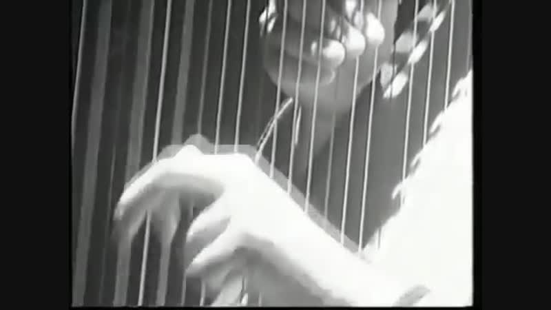 Beatles Eleanor Rigby performed by Trio Rococo