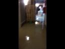 Потоп в ЕВЕ