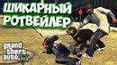 GTA 5 Я ХОЧУ СЕБЕ ТАКУЮ СОБАКУ КАК ОТКРЫТЬ РОТВЕЙЛЕРА В ГТА 5 I Прохождение на Русском 3 Серия