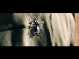 RUS | Финальный трейлер фильма «Черновик». 2018.