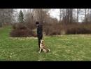 Нахаживаем движение рядом Нудные тренировки движения с мишенью