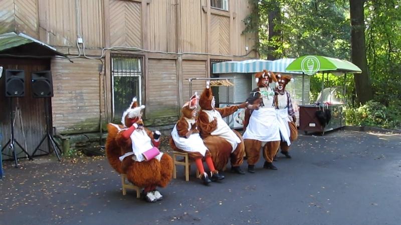 Белки от Испании до Финляндии ...фестивальУлитка улиткаползи улитка2018