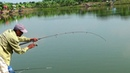 A Village Fish Hunter Caught The Mrigal Fishing By Rod And Reel