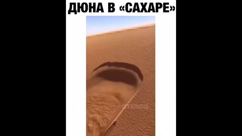 Ну вот пустыню поломал