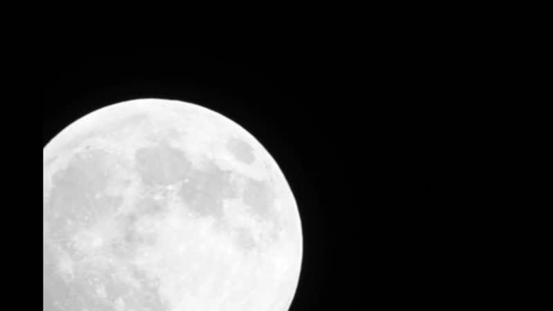 Суперлуние февраль 2019 Луна движется в кадре
