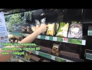 ППРОДУКТЫ В TESKO ПАТТАЙЯ район Джомтьен часть 2 продукты на борщ в Таиланде