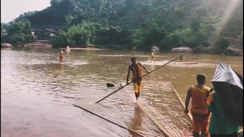 Плавание на стебле бамбука