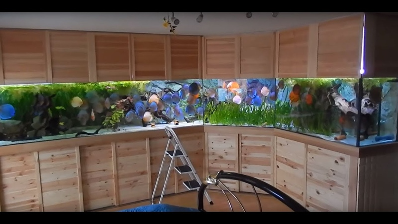 The ULTIMATE Discus Tank. 4000 Liters (1056 Gallons) Stefan Weber