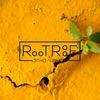 RooTRooF школа этнической музыки