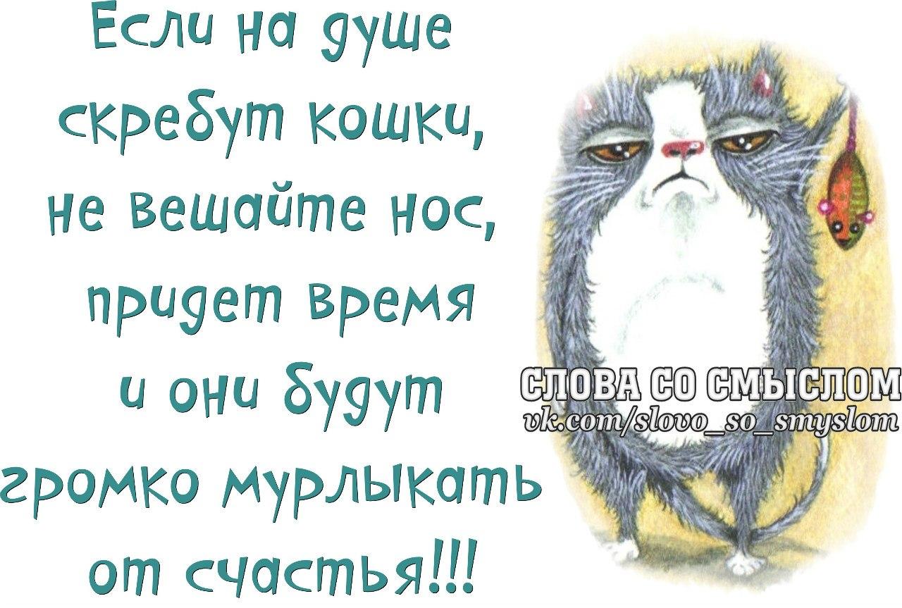 Народное лечение мастопатии Лечимся. com 63