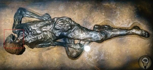 ДЕТЕКТИВ ЖЕЛЕЗНОГО ВЕКА: ЗА ЧТО УБИЛИ БОЛОТНЫХ ЛЮДЕЙ За последние два века в торфяных болотах Северной Европы нашли около тысячи древних тел. Они так хорошо сохранились, что зачастую к находкам