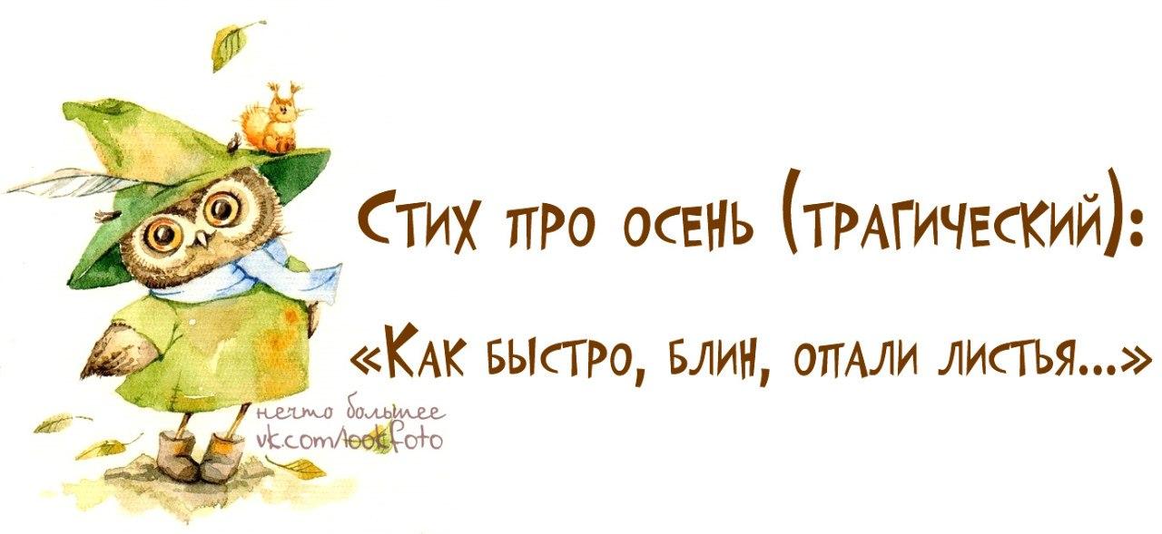 http://cs309527.userapi.com/v309527205/49cc/wuV3Wp-JoPk.jpg