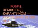 КОБРА: ЗЕМЛЯ ПОД КАРАНТИНОМ — ПОСЛЕДНИЕ 26 000 ЛЕТ