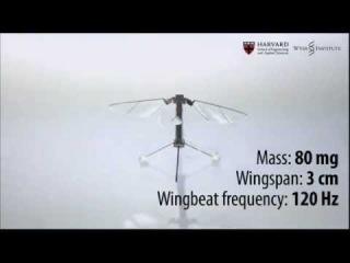 Ученые показали летающего робота-насекомое