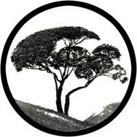 """Логотип Группа """"Still Bound"""""""
