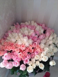 фото розы большие букеты