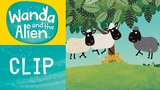 Wanda And The Alien - The Sheep get the Hiccups!