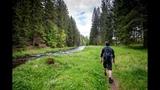Naturschutz Nationalpark Bayerischer Wald - eine moderne Heldengeschichte Capriccio BR