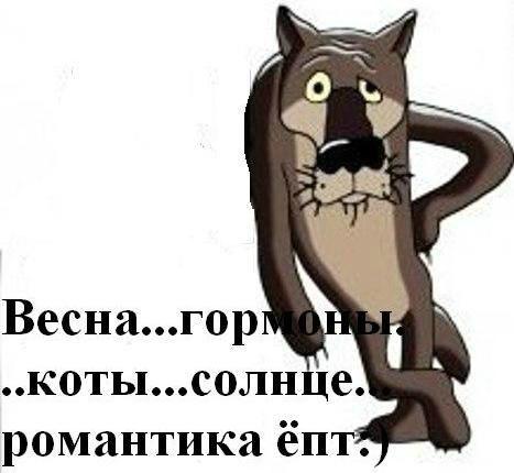 Ivan Gordienko, Belgorod - photo №9