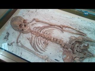 Частные музеи Тюмени: выживают, как могут