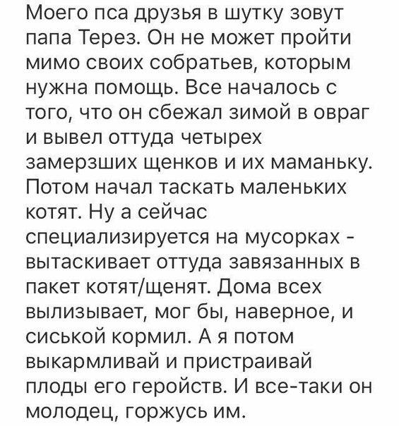 Фото №456252433 со страницы Юли Варламовой