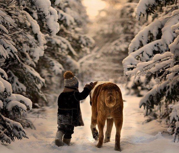Счастье - это когда тебя понимают, большое счастье - это когда тебя любят, настоящее счастье - это когда любишь ты