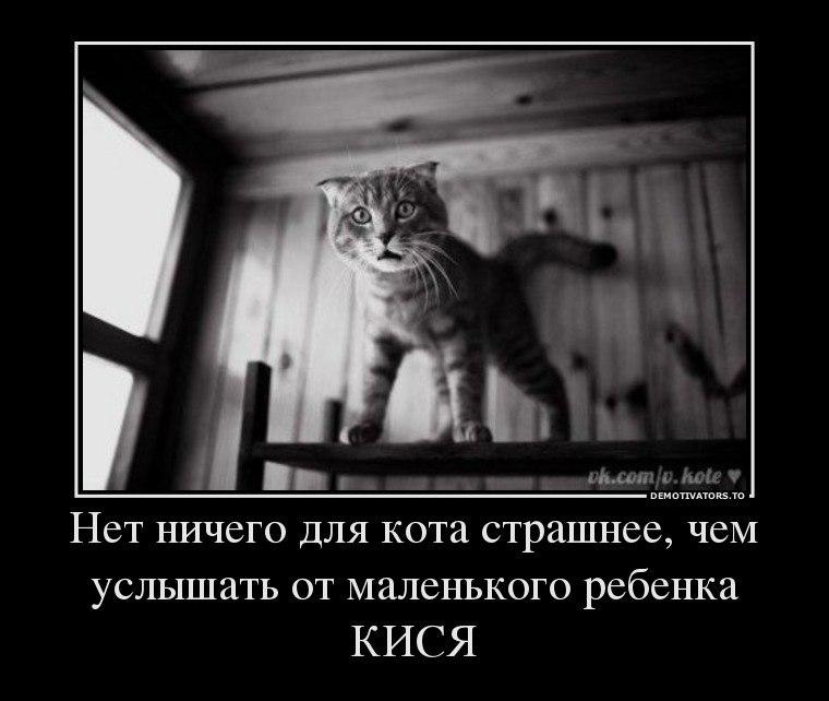 Почувствовал система обучения картинки Егор оборвал его: