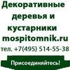 """Питомник декоративных растений """"Моспитомник"""""""