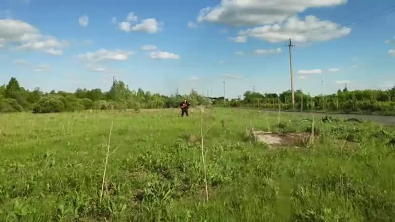 КЛИП Миноксидил от Михи Бороды Мохнатая поляна