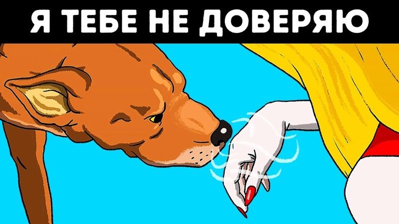 Ученые Подтвердили Что Собаки Чуют Плохих Людей