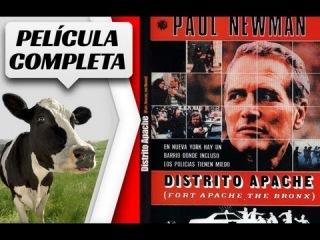 DISTRITO APACHE, EL BRONX   Pelicula Completa (1981 - Paul Newman)