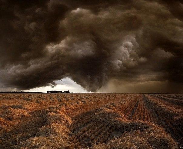 Застрять одному в поле в то время, как приближаются эти зловещие облака, должно быть довольно пугающе. Пока надвигалась гроза, лил дождь и сверкали молнии, 61-летний фотограф из Германии Франц Шумахер не пытался бежать в поиске укрытия. Наоборот, он установил свою камеру и запечатлел красивое и пугающее природное явление.