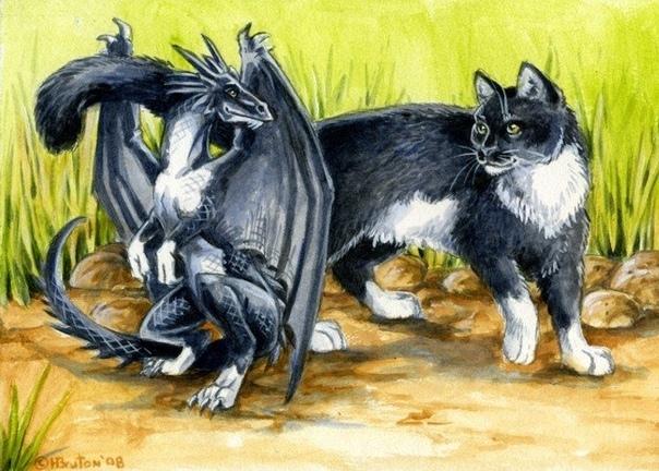Все вопросы к поставщикам экзотических птиц Кошка Манька жила в зоопарке очень давно. Когда-то, еще полуслепым котенком, ее подбросили в клетку к злобной волчице Фурии. Свирепой хищницы