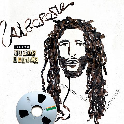 Alborosie альбом Alborosie Meets Roots Radics: Dub For The Radicals