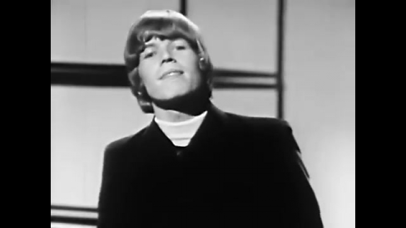 Hermans Hermits - Theres A kind Of Hush - ( Alta Calidad ) Full HD