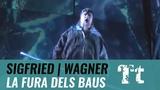 Richard Wagner Siegfried LA FURA DELS BAUS Zubin Mehta (Valencia 2008)